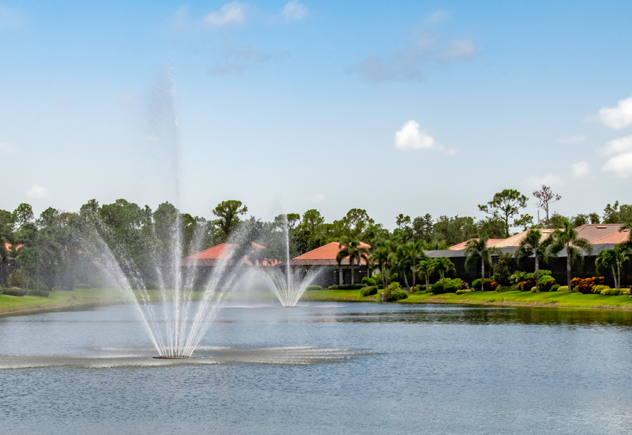 Chestnut Grove Villas Lake Fountain | Hammock Isles at The Vineyards HOA